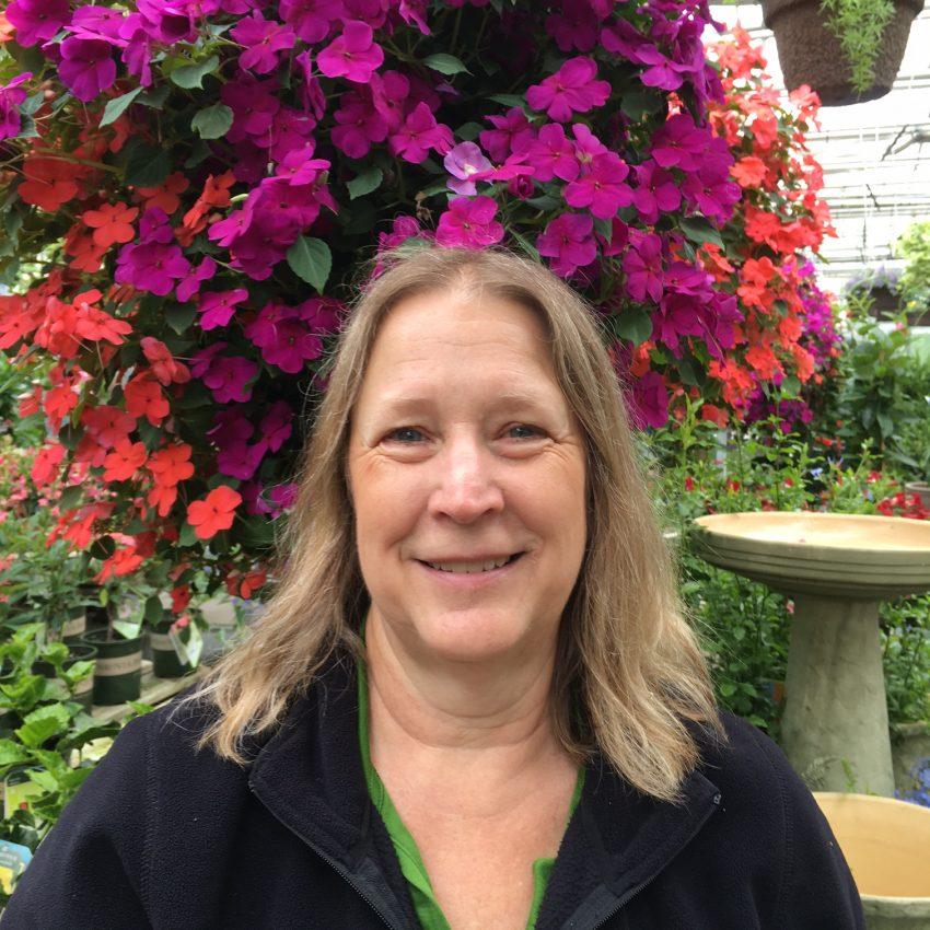 Diane Nolte